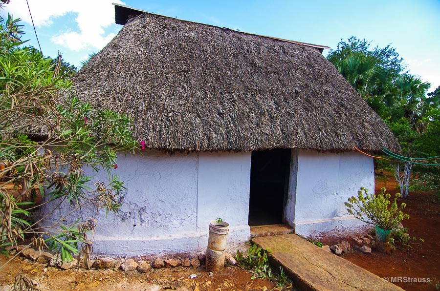 Traditional palapa roof adobe house